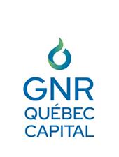 Logo GNR